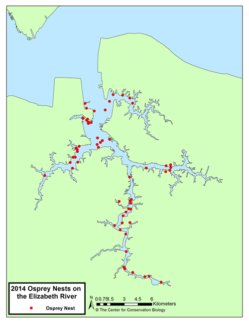 Map of osprey pairs along the Elizabeth River from the 2014 survey.
